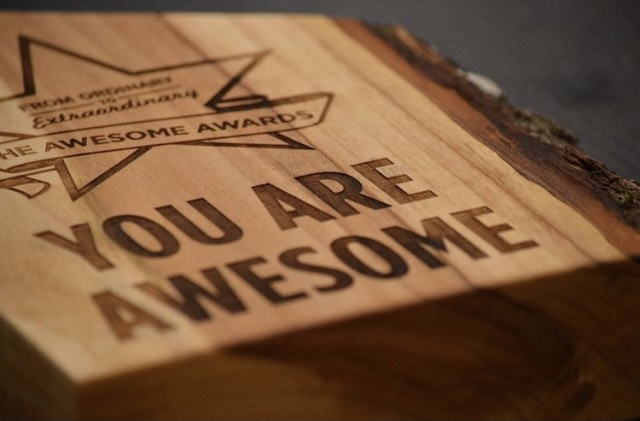 You Are Awesome Award by Eclipse Awards International